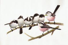 http://birdart.lanius.ro/wp-content/gallery/painting11/19-oszapo-fiokak.jpg