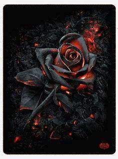 Burnt Rose Fleece Blanket