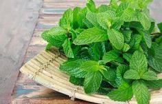 19.-Crushed-Mint-Leaves-For-Dark-Circles