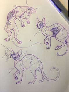 Animal Sketches, Animal Drawings, Cute Drawings, Art Sketches, Sketchbook Inspiration, Art Sketchbook, Drawing Cartoon Characters, Arte Obscura, Mythical Creatures Art
