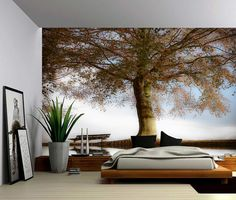 Large Wall Murals rising bamboo forest mural wallpaper … | pinteres…