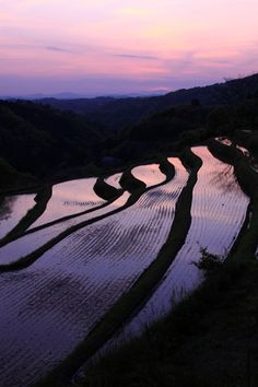 look at more picures of this, then remember they are completely man made, farmed with no machine other than a water buffalo and plow.... Terraced rice paddies in Okayama, Japan