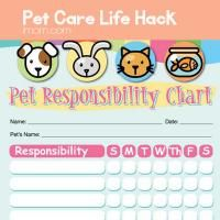1000 images about pet care on pinterest life hacks pet care and