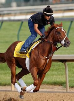 I'll Have Another (2012 Kentucky Derby winner)