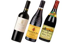 Wine Review: Red wines to serve with Christmas lunch - Telegraph