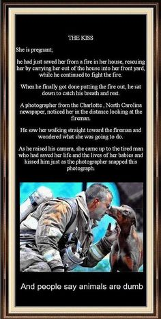 """The emotional """"Thank You"""" from this rescued dog makes this fire fighters job so rewarding! #Heroes #Anipals"""
