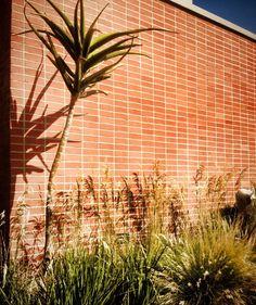 Structural contrast of grassland planting