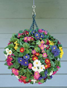 This DIY Hanging Planter combines two planters for a great flower ball effect. Just combine two planters to make one larger one. Diy Hanging, Hanging Baskets, Hanging Planters, Hanging Gardens, Hanging Flower Baskets, Fall Planters, Lawn And Garden, Garden Art, Home And Garden