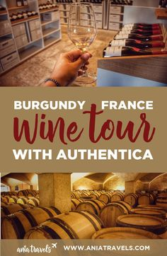 When I think of France all I think about is WINE WINE and more WINE! Here's my experience with Authentica Burgundy Wine Tour. | Dijon | France | Wine Tour | Food Tour | Burgundy Wine | Wine