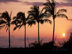 Sunset Over Kihei, Maui, Hawaii Photographic Print by Chris Rogers at AllPosters.com