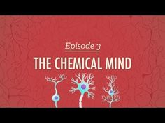 NEUROTRANSMITTERS - The Chemical Mind - Crash Course Psychology #3 - YouTube