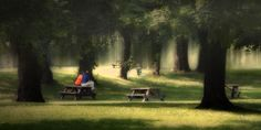 Peaceful - photo by Bill Birtch Image Processing, Outdoor Furniture, Outdoor Decor, Ontario, Canvas Prints, Fine Art, London, Park, Digital