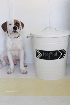 Is it possible to blend your dog's food container naturally with your home decor? The answer is yes with this creative, easy to make DIY dog food storage. Garbage Can Storage, Baby Food Storage, Diy Storage, Dog Food Container, Food Containers, Pumpkin Dog Treats, Creative Home, Creative Ideas, Dog Food Recipes