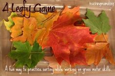 A Leafy Game: A fun game to practice sorting along with gross motor skills.