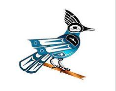 Haida Stellar Jay