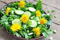 7 Edible Weeds That Are More Nutritious Than Vegetables - Gardening Tips - Watch Video - Garten Dandelion And Burdock, Dandelion Benefits, Dandelion Flower, Healthy Food List, Healthy Snacks, Healthy Recipes, Healthy Eating, Herb Seeds, Wonderful Recipe