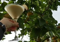 Cremiger Nashibirne-Dattel-Cocktail Alcoholic Drinks, Cocktails, Wine, Food, Non Alcoholic Beverages, Rezepte, Craft Cocktails, Cocktail, Alcoholic Beverages