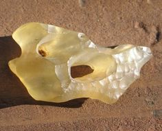 ✯ A Lovely Piece of Libyan Desert Glass Specimen with Natural Hole and Pseudo remaglypts ✯