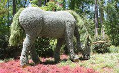 Unicorn - Atlanta Botanical Garden
