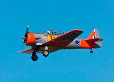 SAAF Harvard - I LOVE this aircraft