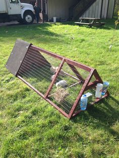 Rabbit Hutch Accessories for my cavies