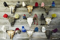 Hats to fit any head. Shop cool, cozy, and classic looks at EddieBauer.com