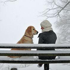 Two on a snowy bench … (by joergschickedanz)