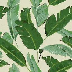 Industry West Wallpaper - Banana Leaves