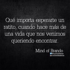 〽️ Mind of Brando