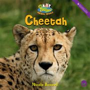 Cheetah —by Nicole Boswell Series: Zoozoo Animal World GR Level: F Genre: Informational