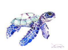 Baby+Sea+Turtle+Watercolor | Blue Baby sea turtle painting, 12 X 9 in, sea animal art, animal lover ...