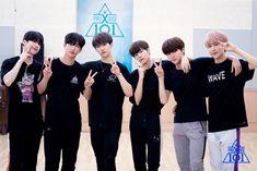 produce x 101 Produce 101 Season 2, Rapmon, Special Girl, Album Songs, K Idol, Boy Groups, Korea, Handsome, Wattpad