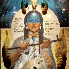 """White Buffalo Calf Woman Stands With the People.jpg Watching Standing Rock Sioux Protest """"A Prayer for the Good Guys and Bad Guys, All Got to Learn to Love One Time or Another"""". Holiness David Running Eagle Shooting Star https://plus.google.com/+WhiteBuffaloCalfWomanTwinDeerMother/posts/j1YpxaEfTMr  White Buffalo Calf Woman knews & visions circle https://plus.google.com/u/0/communities/112647294491367091490"""