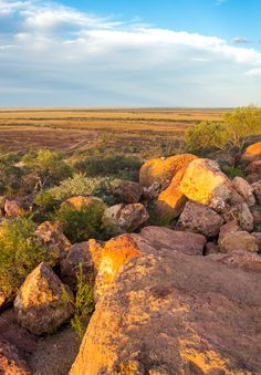 Tips for taking an Outback Queensland road trip with kids. Plus get our 2 week itinerary for places to visit in Outback Queensland, Australia!