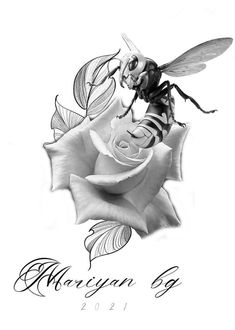Abstract, Bugs, Artwork, Design, Summary, Work Of Art, Auguste Rodin Artwork, Beetles