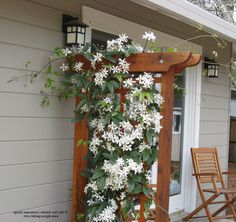clematis on trellis landscape mediterranean with white flowers craftsman outdoor wall lanterns