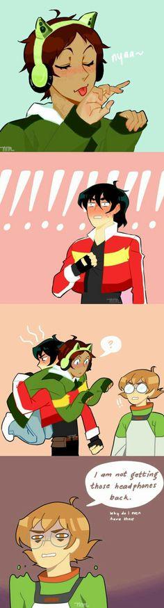 Ha  Poor Pidgeon