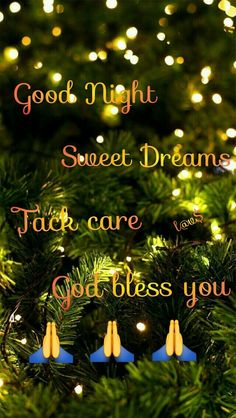 Good Night Prayer Quotes, Beautiful Good Night Quotes, Good Night I Love You, Good Night Friends, Good Night Gif, Good Night Wishes, Good Night Sweet Dreams, Good Night Massage, Good Night Flowers