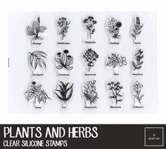 Plants and Herbs Clear Silicone Stamps
