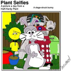 Everyone wants a selfie with plant. Plant Cartoon, Hardy Plants, Bunny, Selfie, Adventure, Pictures, Fictional Characters, Photos, Cute Bunny