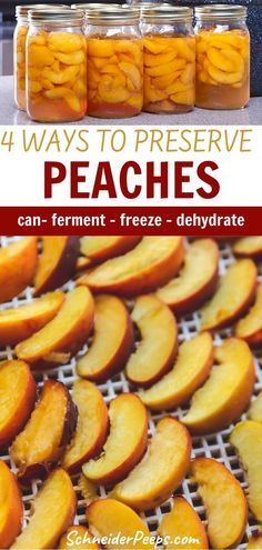 Preserve peaches to enjoy year round through canning, dehydrating, freezing, or jam making. Learn how to simple it is with these step-by-step instructions! Plus do you really need to peel peaches before preserving them? What do you do with the leftover peels or peach pits? All your peach preserving questions are answered. #PreservingFood #FromScratch #Homesteading #SimpleLiving Healthy Foods To Eat, Healthy Eating, Healthy Recipes, Preserving Food, Preserving Peaches, How To Peel Peaches, Jam Making, Peach Preserves, How To Make Jam