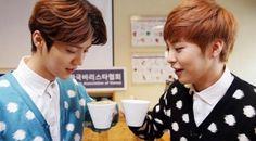 EXO Luhan and Xiumin