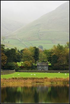 Perhaps a brisk walk on this slightly misty day... past the pond and back again.Then a cuppa and some scones. How lovely.  Cumbria, Lake District
