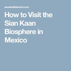 How to Visit the Sian Kaan Biosphere in Mexico