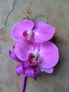 Butterfly orchid corsage