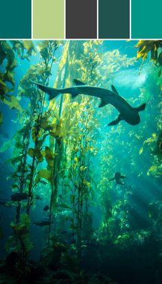 Kelp Forest By Lisa Perrone   via Stylyze