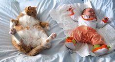 Diese 13 selbstgemachten Fotos zeigen, dass kleine Kinder und Katzen beste Freunde sein können! - Seite 5 von 13 - DIY Bastelideen