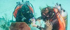 Cerca de 35 mil toneladas de plástico flotan en los océanos, según estudio - El Colombiano
