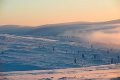 These photographs were taken in Saariselkä, Lapland, Finland between the and the of January. It is officially Kaamos (Polar Night) until March. Polar Night, Finland, Sunrise, Behance, Lost, Mountains, Travel, Viajes, Destinations