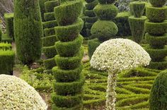 Elaborate topiary in the Jardim Botanico, Funchal, Madeira, Portugal, Europe